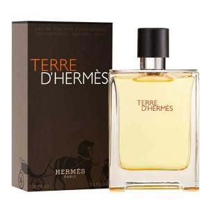 Hermes Terre DHermes Eau De Toilette For Men 100ml